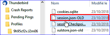Captures/Windows/session_json.png